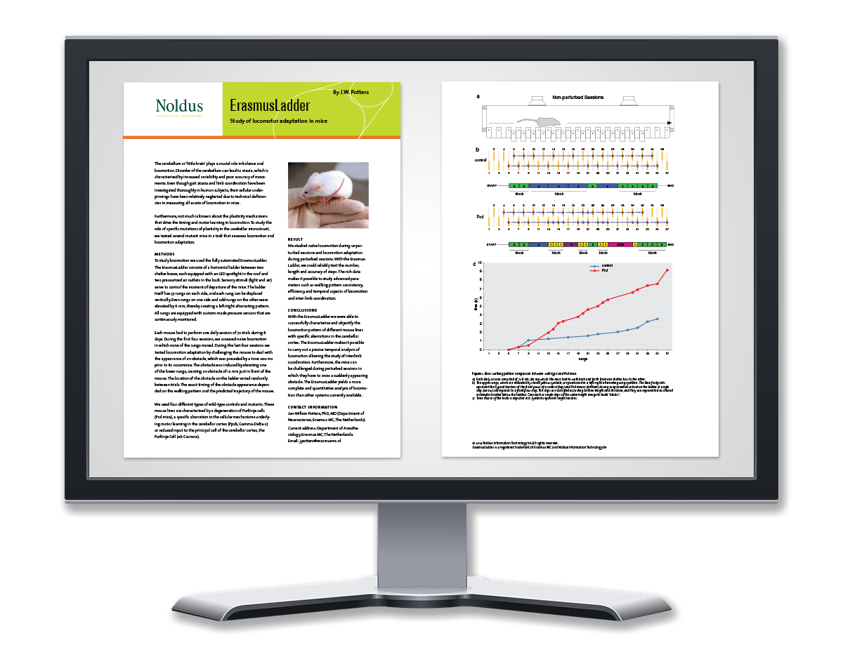 whitepaper-display-erasmusladder.png